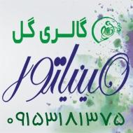 گالری گل مینیاتور در مشهد