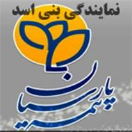 بیمه پارسیان نمایندگی بنی اسد