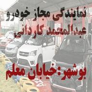 نمایندگی مجاز اتومبیل و ماشین در بوشهر