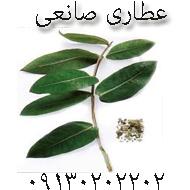 عطاری و داروگیاهی در اصفهان