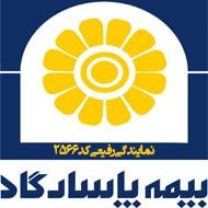 بیمه پاسارگاد نمایندگی 2566 در مشهد