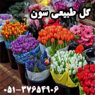 پخش گل طبیعی سون در مشهد