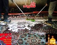 قالیشویی رضوی